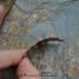 Copper Moroccan Lace Scalloped Bracelet bar (1)