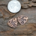 Artisan Copper Thunderbird (1) pair