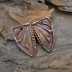 Copper Butterfly Wing (1) pair